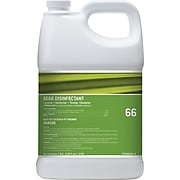Staples® #66 Disinfectant and Sanitizer, Unscented, 1 Gallon (STP660001-C-CC)