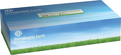 Sustainable Earth by Staples® facial tissue, 2-ply, flat box, 100 sheets/bx, 10 bx/case (SEB20195-CC)