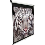 "Elite Screens 80"" Diagonal, View 48"" x 64"" Manual Pull Down Front Projection Screen"