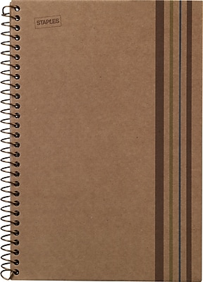 Sustainable Earth by Staples Wirebound Notebook, 5 Subject, 8-1/2