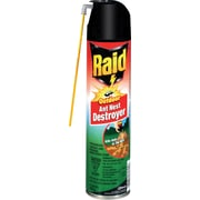 Raid® Outdoor Ant Nest Destroyer