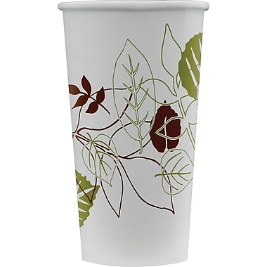 Dixie Pathways 16 oz. Cold Cups, Double Poly-Coated, 1200/Case (DXS16PPATH)
