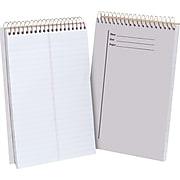 """Ampad® Steno Book, Clear, 6"""" x 9"""""""
