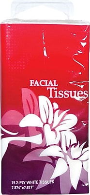 cv travel size facial tissue  6 packs