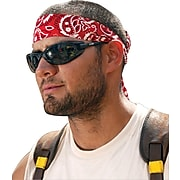 Ergodyne Chill-Its Bandana/Headband
