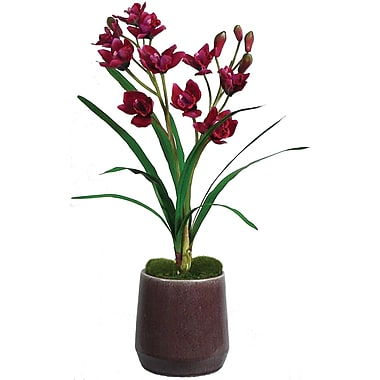 Laura Ashley® Red Orchid in Ceramic Container