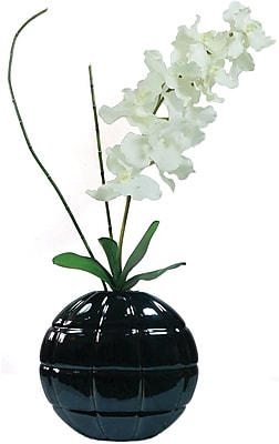 Laura Ashley® Real Touch White Vanda Orchid in Designer Ceramic Container