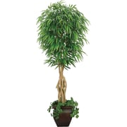 LA 7FT SILK WILLOW FICUS TREE
