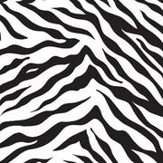 "Shamrock Zebra Stripes Gift Wrap, Size 24"" x 417'"