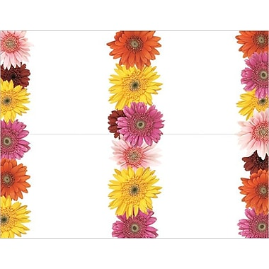 Great Papers® Gerbera Daisy 4-Up Postcards