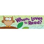 Carson-Dellosa Owl Bookmarks