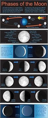 Mark Twain Phases of the Moon Bulletin Board Set
