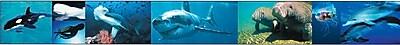 Brighter Child Ocean Creatures Floor Puzzle