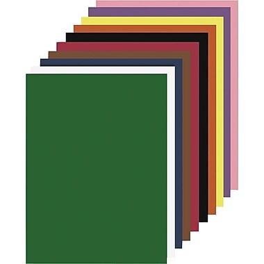 Papier de bricolage Nature Saver, 9 po x 12 po, couleurs variées