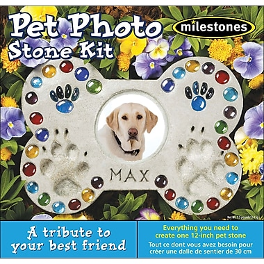 Midwest Products Pet Photo Stone Kit