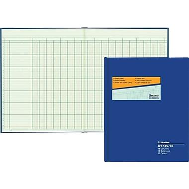 Blueline® A1740 Columnar Book, A1740-18, 18 Columns