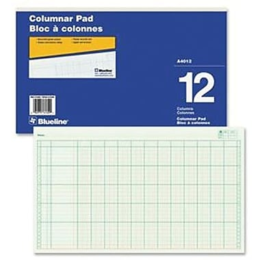 Blueline® Columnar Pad, A4012, 12 Columns