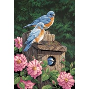 """Dimensions Paint By Number Craft Kit Painting Painting, 14"""" x 20"""", Garden Bluebirds (91401)"""
