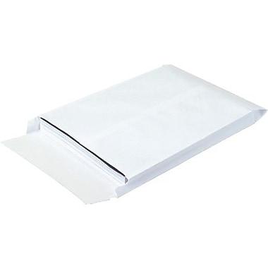Expandable Ship-Lite® Envelopes, 100/Case