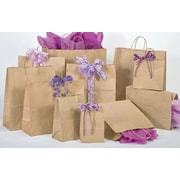 "Shamrock Bonita Kraft Paper 16.25""H x 14""W x 9.5""D Shopping Bags, Brown, 200/Case"