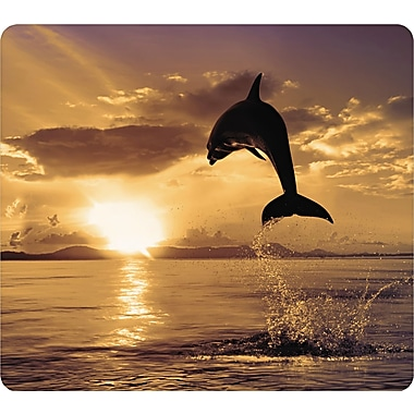 Recycled Mouse Pad, Nonskid Base, 7-1/2 x 9, Dolphin