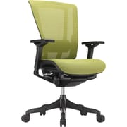 Raynor Nefil Elite Mesh Computer And Desk Office Chair Fixed Arms Green Elitegrn