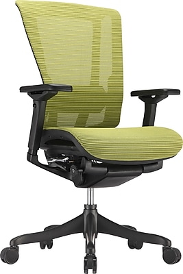 Raynor Nefil Elite Mesh Computer and Desk Office Chair, Fixed Arms, Green (ELITE3DGRN(DS))