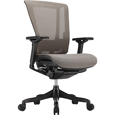 Raynor nefil Elite Smart Motion Mesh Managers Chair, 3D Gray