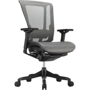 Raynor nefil Elite Smart Motion Mesh Manager's Chair, Adjustable Arms, Gray