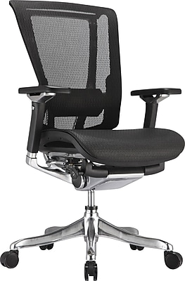 Raynor nefil Pro Smart Motion Mid-Back Mesh Manager's Chair, Black