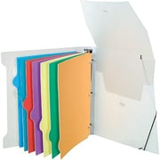 "Storex Poly Organizer Binder with 8 Index Tabs, 1½"", 8 Multicoloured Tabs"