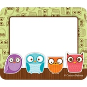 Carson-Dellosa Owls Name Tags