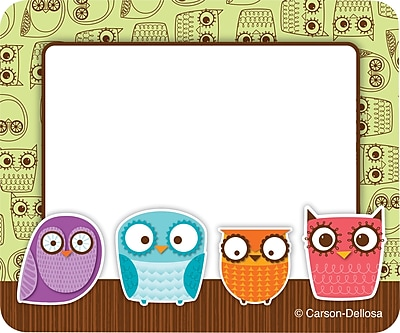 Carson-Dellosa Owls Name Tags, 40/Pack