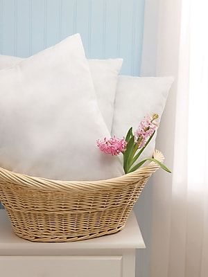 Classic Disposable Pillows, White, 27