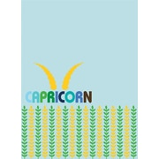 WallPops, 1' x 1', Film Capricorn Dry-Erase Message Board (WPE0207)