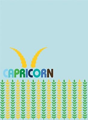 WallPops Capricorn Dry-Erase Message Board