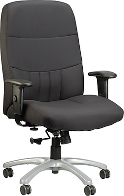 Raynor Fabric Executive Office Chair, Adjustable Arms, Black (BM9000-BLK)
