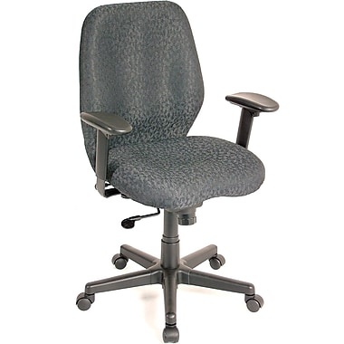 Raynor Aviator Fabric Computer and Desk Office Chair, Adjustable Arms, Charcoal (FM5505-CH)
