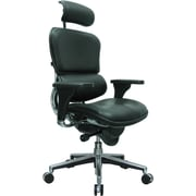 Eurotech Ergohuman Leather Executive Office Chair, Adjustable Arms, Black (LE9ERG(N))
