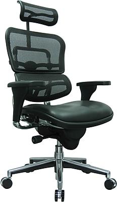 Eurotech Ergohuman Leather Executive Office Chair, Adjustable Arms, Black (LEM4ERG-LBK(N))