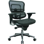Raynor Ergohuman Mesh Computer and Desk Office Chair, Black, Adjustable Arm (ME8ERGLO(N))