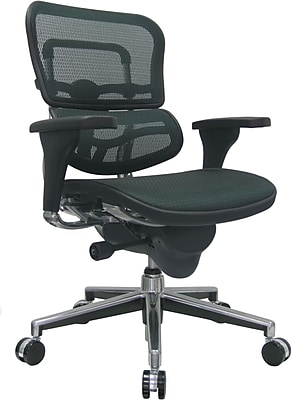 Raynor Ergohuman Mesh Computer and Desk Office Chair, Green, Adjustable Arm (ME8ERGLO-GRN(N)