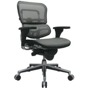 Raynor Ergohuman Mesh Computer and Desk Office Chair, Gray, Adjustable Arm (ME8ERGLO-GREY(N)
