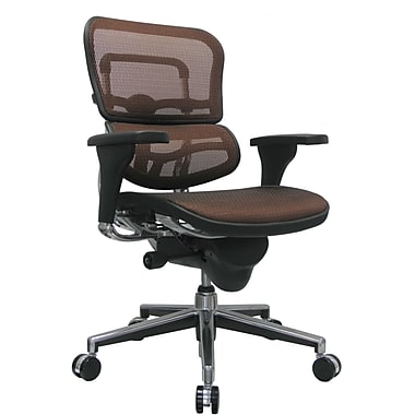 Raynor Eurotech Ergo human Mesh Mid Back Task Chair, Orange