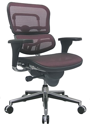 Raynor Ergohuman Mesh Computer and Desk Office Chair, Plum Red, Adjustable Arm (ME8ERGLO-RED(N)