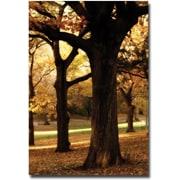 "Trademark Global Ariane Moshayedi ""Park"" Canvas Arts"