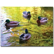 "Trademark Global Amy Vangsgard ""Four Ducks on Pond"" Canvas Art, 24"" x 32"""