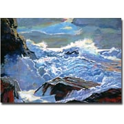 "Trademark Global David Lloyd Glover ""Foaming Sea"" Canvas Art, 22"" x 32"""