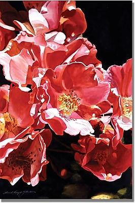 "Trademark Global David Lloyd Glover ""Wild Roses"" Canvas Art, 30"" x 47"""