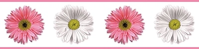 RoomMates® Flower Power Peel and Stick Border, Pink, Red, Rose, White, 180